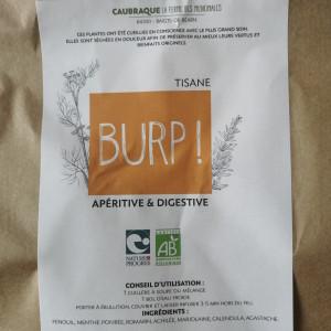 Tisane bio BURP! - 25g