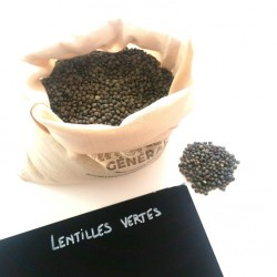 Lentilles vertes BIO - 300g