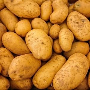 Pommes de terre BIO - 500g